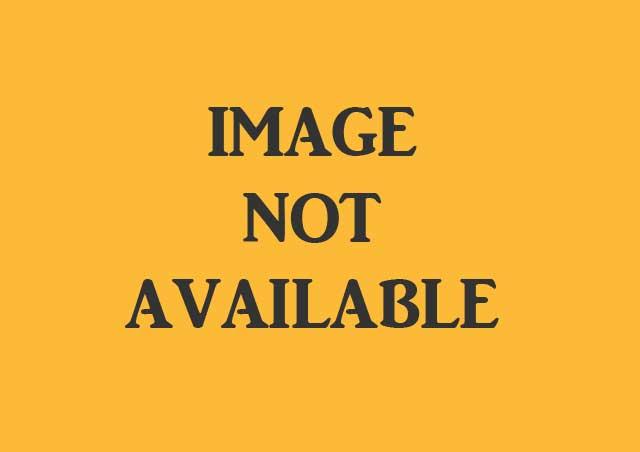 Sivakasi Pattasu Pricelist in Pdf. 2021 Pattasu Kadai Pricelist. Sivakasi Pattasu wholesale Kadai. Sivakasi Pattasu in Fireworks Price. Buy Sivakasi Pattasu Online.